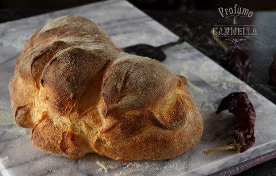 Pane di Matera fatto in casa – con step per la formatura