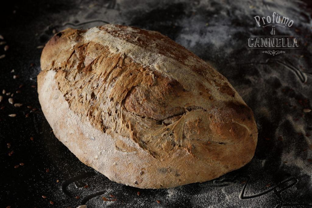 Pane ai cereali a lievitazione naturale
